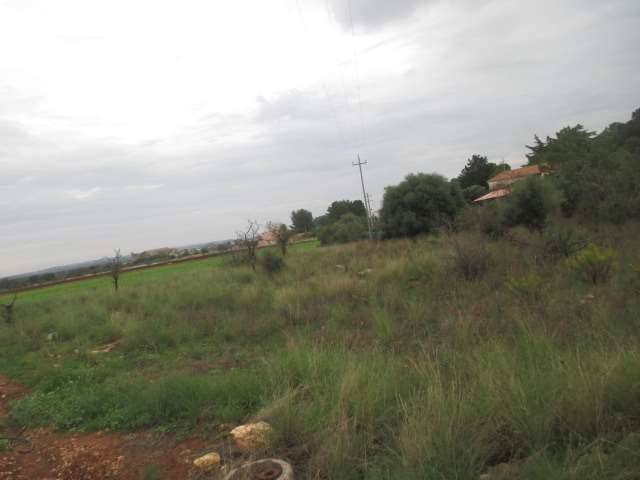 Terreno agricolo a SIRACUSA