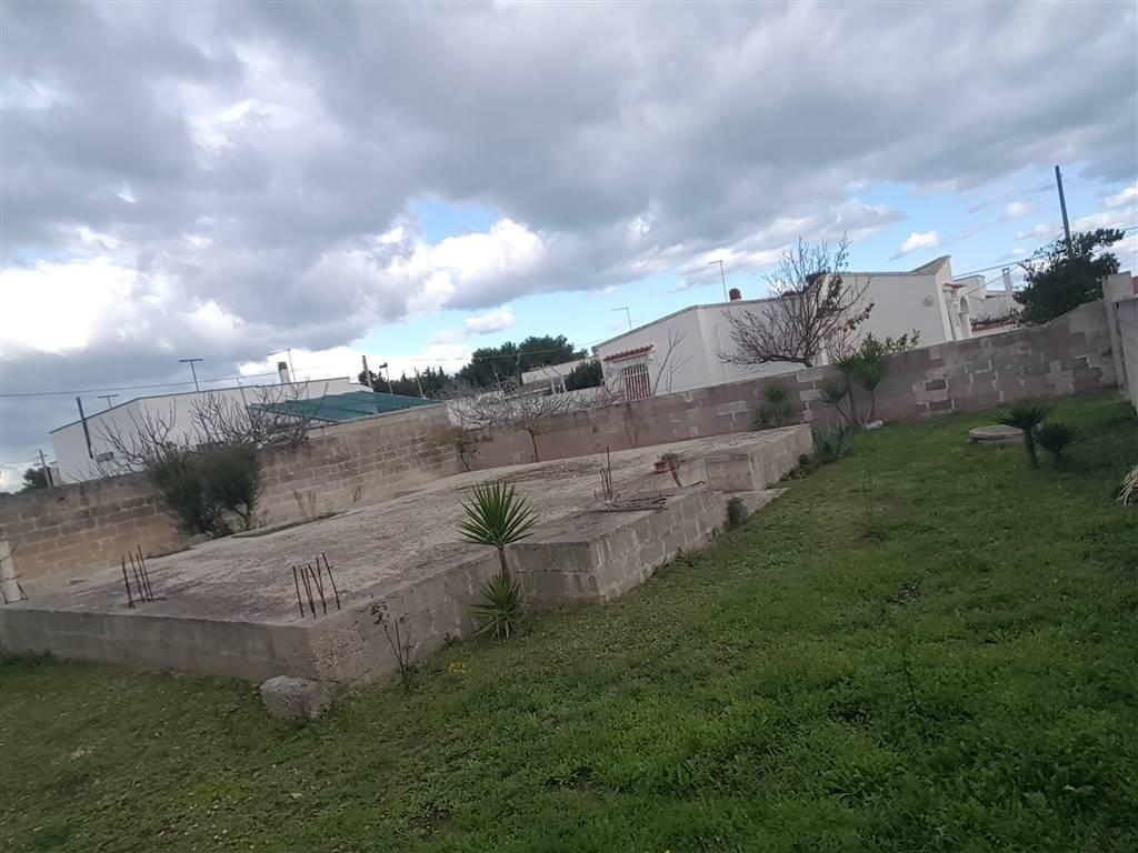 Terreno agricolo a TORCHIAROLO