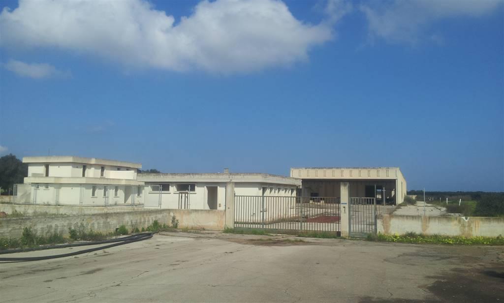 Capannone industriale a TORCHIAROLO